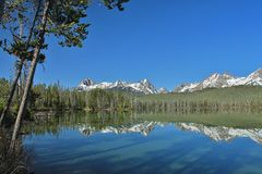 Snowy Peaks Mirrored on a Lake. Snow capped mountains  above a forested  landscape mirrored on a lake Stock Image