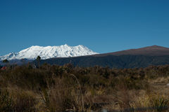 Snowy peaks of New Zealands Mount Ruapehu. Royalty Free Stock Photo