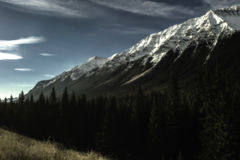 Snowy Peaks. Snowy rocky mountain range sloped with the trees and grassland all meeting together Stock Photography