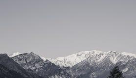 Snowy peaks Stock Image