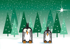 Snowy Penguins Royalty Free Stock Photos