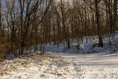 Snowy Petrova Gora in Central Croatia. The snow covered hills around Petrova Gora in Karlovac County, central Croatia stock photo
