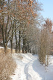 Snowy-Pfad Lizenzfreies Stockbild