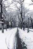 Snowy-Pfad in Wien stockbilder