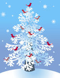 Snowy Pine with Birds Stock Photography