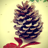 Snowy pine cone Royalty Free Stock Image