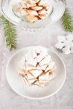 Snowy Pinecones Stock Photos