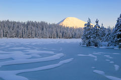Snowy pines and an icy lake. Stock Photo