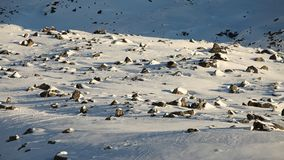 Snowy plateau Stock Image