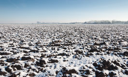 Snowy plowed field Stock Photography