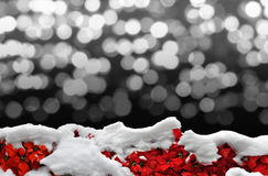 Snowy poinsettia border with background bokeh. Border of white snow over red poinsettia flowers with lights bokeh in the background stock image