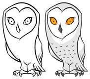 Snowy polar arctic owl Royalty Free Stock Image