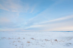 Snowy Prairie Royalty Free Stock Image