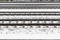 Snowy rails pattern. Several snowy rails one after another Royalty Free Stock Photos