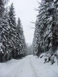 Snowy railways Stock Images