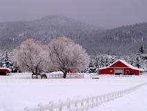 Snowy-Ranch und Pferde Stockfoto