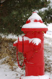 Snowy red hydrant Stock Photos