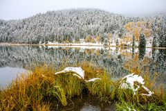 Snowy reflection in Sibbald Pond. Kananaskis Country, Alberta, Canada, first snow Royalty Free Stock Photo