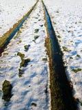 Snowy-Reifenspuren Stockfotos