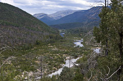 Snowy river in Australia. Royalty Free Stock Image
