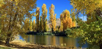 Snowy River, Dalgety, Australia in Autumn. Autumn colours and reflections on the Snowy River on a sunny blue sky day Stock Images