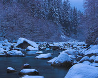 Snowy river and forest. A cold, wintry view along a rocky river valley surrounded by snow covered forest and trees Stock Images