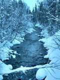 Snowy river. Snowy forest through which a cold river flows Royalty Free Stock Photo