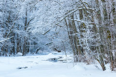 Snowy river landscape Stock Images