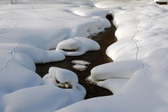 Snowy river Stock Photography
