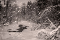 Snowy river Royalty Free Stock Photography