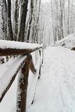 Snowy road. Snow and ice on a mountain path Stock Images