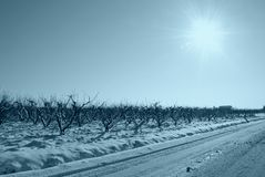 Snowy road Stock Image