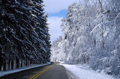 Snowy road 2 Royalty Free Stock Photo