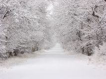 Snowy Road. Round Valley, Ca, USA stock photography