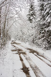 Snowy road. A photo of muddy road in forest covered with fresh snow Stock Photography