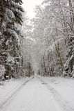 Snowy road Royalty Free Stock Photos