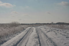 Snowy road in countreyside. Russia, Siberia. Sunny day. clear blue sky, Stock Photo