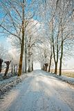 Snowy road in the countryside in the Netherlands. Snowy road in the countryside from the Netherlands in winter Royalty Free Stock Image