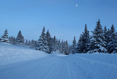 Snowy road in evening Stock Images