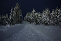 Snowy road in Finnish Lapland Royalty Free Stock Image