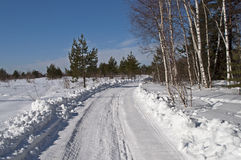 Snowy road at forest edge Stock Image