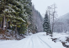 Snowy road in the forest Royalty Free Stock Photo
