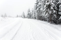 Snowy road in the forest Stock Photography