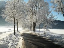 Snowy Road in Germany. A beautiful snowy road in Bavaria, Germany royalty free stock images
