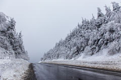 Snowy road Royalty Free Stock Image
