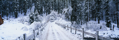 Snowy road in Lake Tahoe, CA Stock Photography