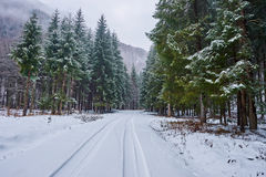 Snowy road in mountains Stock Photos