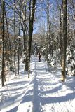 Snowy road. Picture taken by a sunny winter day in Duchesnay Park near Quebec City, Canada Stock Image
