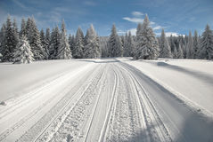 Snowy road. Ski slope and snowy road through spruce forest with snowmobile tracks in a bright winter day Stock Image