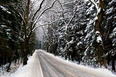 Snowy road Royalty Free Stock Photo